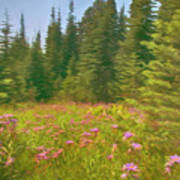 Flowers In A Mountain Glade Poster