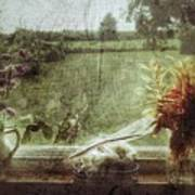 Flowers In A Window Poster