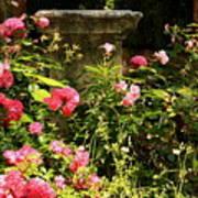 Flowers In Garden In Venice Poster