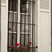 Flowers in Paris windowbox Poster