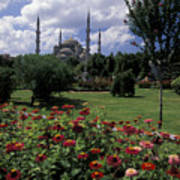 Flowers In Sultanahmet Square Poster