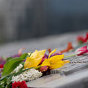 Flowers Memory Poster