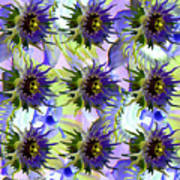 Flowers On The Wall Poster by Betsy Knapp