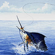 Fly Fishing For Sailfish Poster