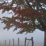 Foggy Autumn Morning In Cades Cove Poster