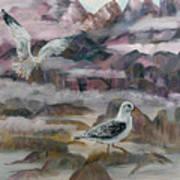 Foggy Gulls Poster