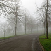 Foggy Morning At The Park Winding Path Poster