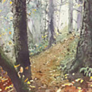 Foggy Path Poster