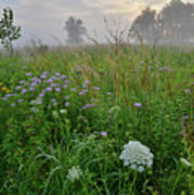 Foggy Prairie In Glacial Park In Mchenry County Poster