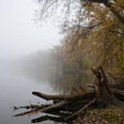 Foggy River Bank Poster