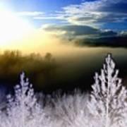 Foggy Winter Sunset Poster