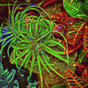 Foliage Abstract 3698 Poster