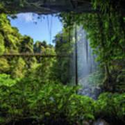 Footbridge And Crystal Falls  In The Rainforest Of Dorrigo In Australia Poster
