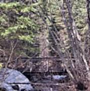 Footbridge In The Spring Poster
