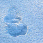 Footprint In The Snow Poster