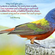 For Every Storm A Rainbow Irish Blessing Poster by Bonnie Barry