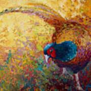 Foraging Pheasant Poster