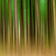 Forest Abstract04 Poster by Svetlana Sewell