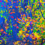 Forest Foliage Art Poster