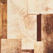 Forest Imprints Poster
