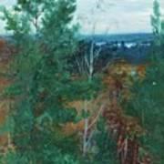 Forest Landscape Poster