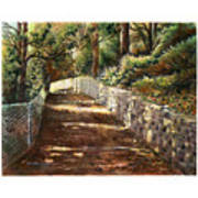 Forest Path White Cliff Poster