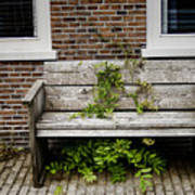 Forgotten Bench Poster