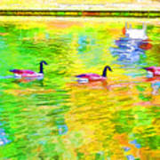 Four Canadian Geese In The Water 1 Poster