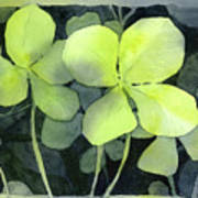 Four Leaf Clover Watercolor Poster