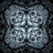 Noir Four Roses Symmetrical Focus Poster