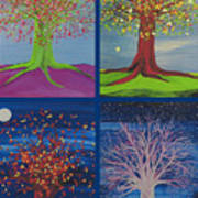 Four Seasons Trees By Jrr Poster