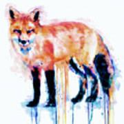 Fox  Poster