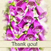 Foxglove Flowers Thank You Card Poster