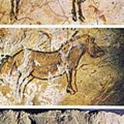 France And Spain: Cave Art Poster