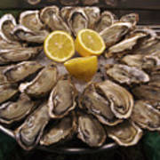 France, Paris Oysters On Display Poster
