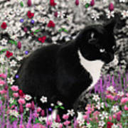 Freckles In Flowers II Poster