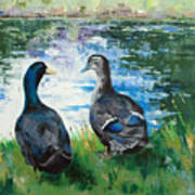 Fred And Ethel At Scott's Pond Poster
