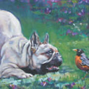 French Bulldog Meets Robin Redbreast Poster