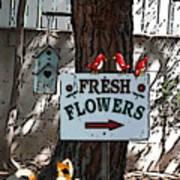 Fresh Flowers Poster