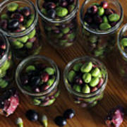 Fresh Harvested Olives And Tunas Poster