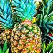 Fresh Pineapple Poster