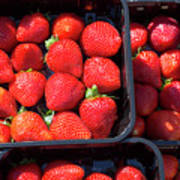 Fresh Ripe Strawberries In Plastic Boxes Poster