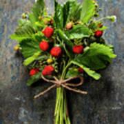 fresh Wild strawberries on wooden background  Poster