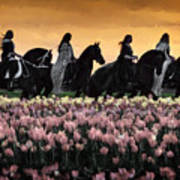 Friesians At Sunset Poster