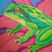 Frog On Flower Poster