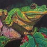 Froggie Poster