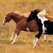 Frolicking Horses Poster