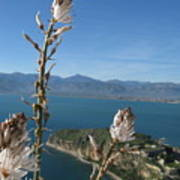 From Atop Nafplion Poster