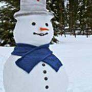 Frosty Alaskan Poster