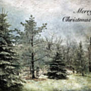 Frosty Christmas Card Poster